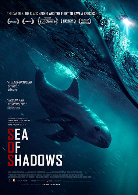 Sea of Shadows | © Terra Mater Factual Studios / Submarine