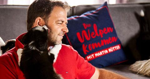 Martin Rutter Die Welpen Kommen Dokuserie 2018 2019 Crew United