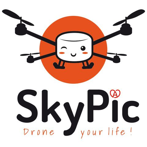 Skypic: camera-drones up to 5kg