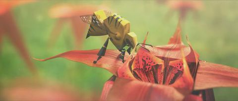 The Fantastic Love of Beeboy | © Clemens Roth / Filmakademie