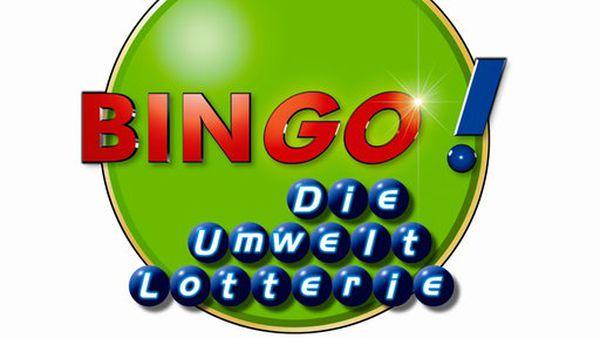 Bingo Gewinnzahlen